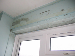Cold bridging, condensation & mould CSE